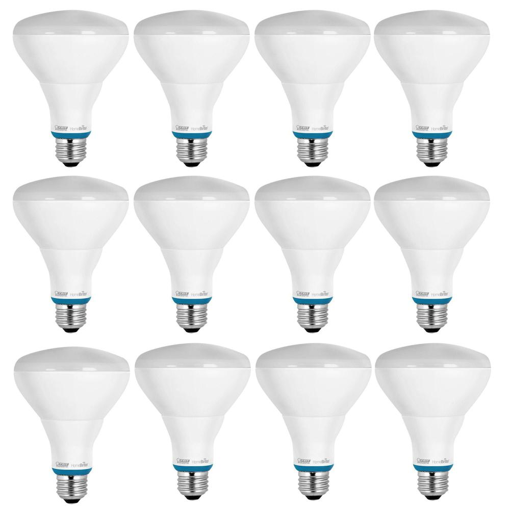 Feit Electric 65 Watt Soft White Dimmable Incandescent