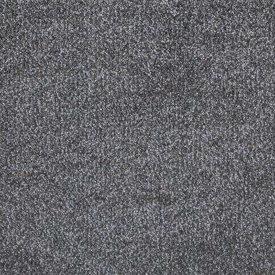 Perfected II - Color Exceptional Texture 12 ft. Carpet