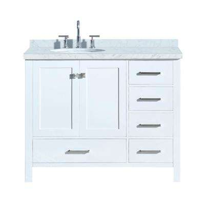 Cambridge 43 in. Bath Vanity ...