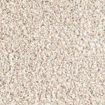 Carpet Sample - Immaculate I - Color Graceful Twist 8 in. x 8 in.