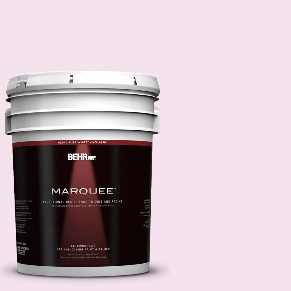 BEHR MARQUEE 5-gal. #690C-2 Pink Amour Flat Exterior Paint