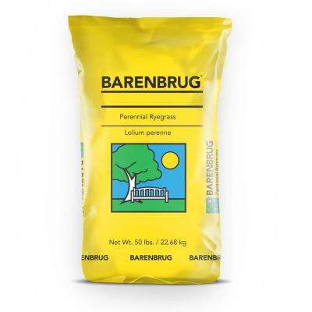 50 lbs. Barlennium Perennial Ryegrass Seed