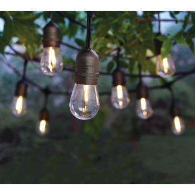 12-Light Indoor/Outdoor 24 ft.  String Light with S14 Single Filament LED Bulbs