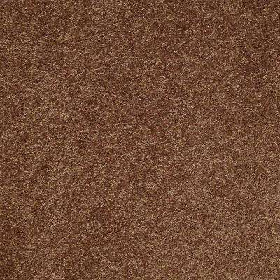 Brave Soul II - Color Satchel Texture 12 ft. Carpet