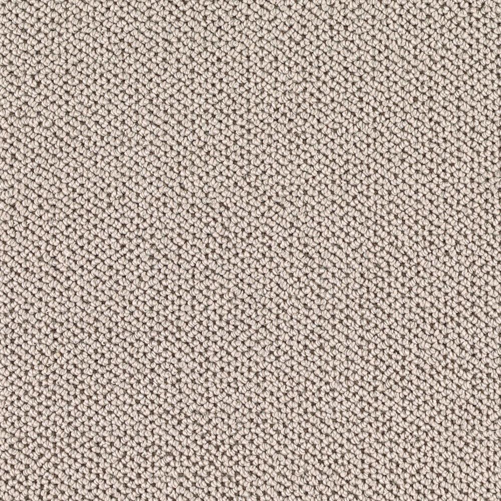 Carpet Sample - Priority - Color Bradford Loop 8 in x 8 in