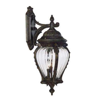Nottingham Collection 3-Light Black Coral Outdoor Wall-Mount Fixture