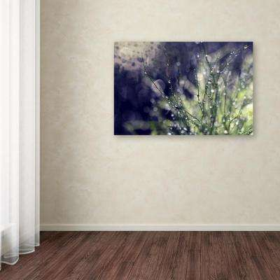"30 in. x 47 in. ""Secrets of Nature"" by Beata Czyzowska Young Printed Canvas Wall Art"