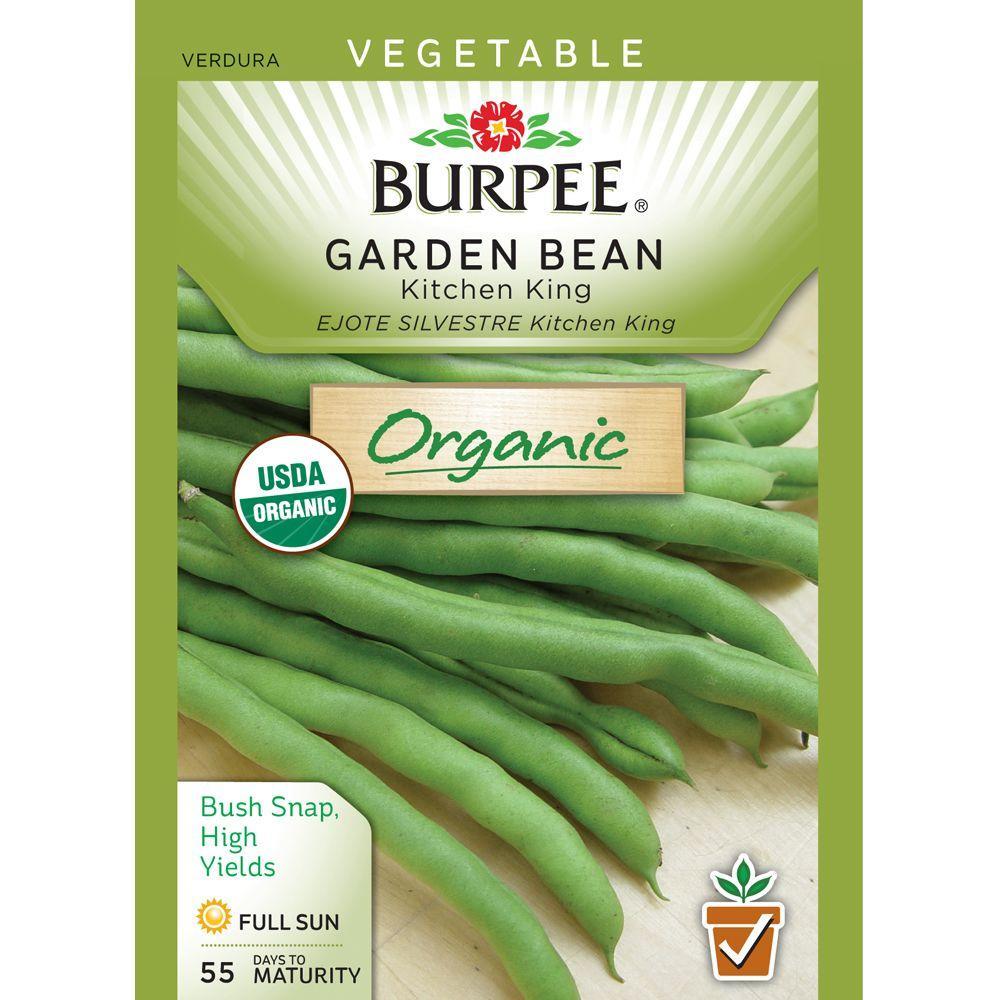 recipe: bush bean seeds home depot [2]