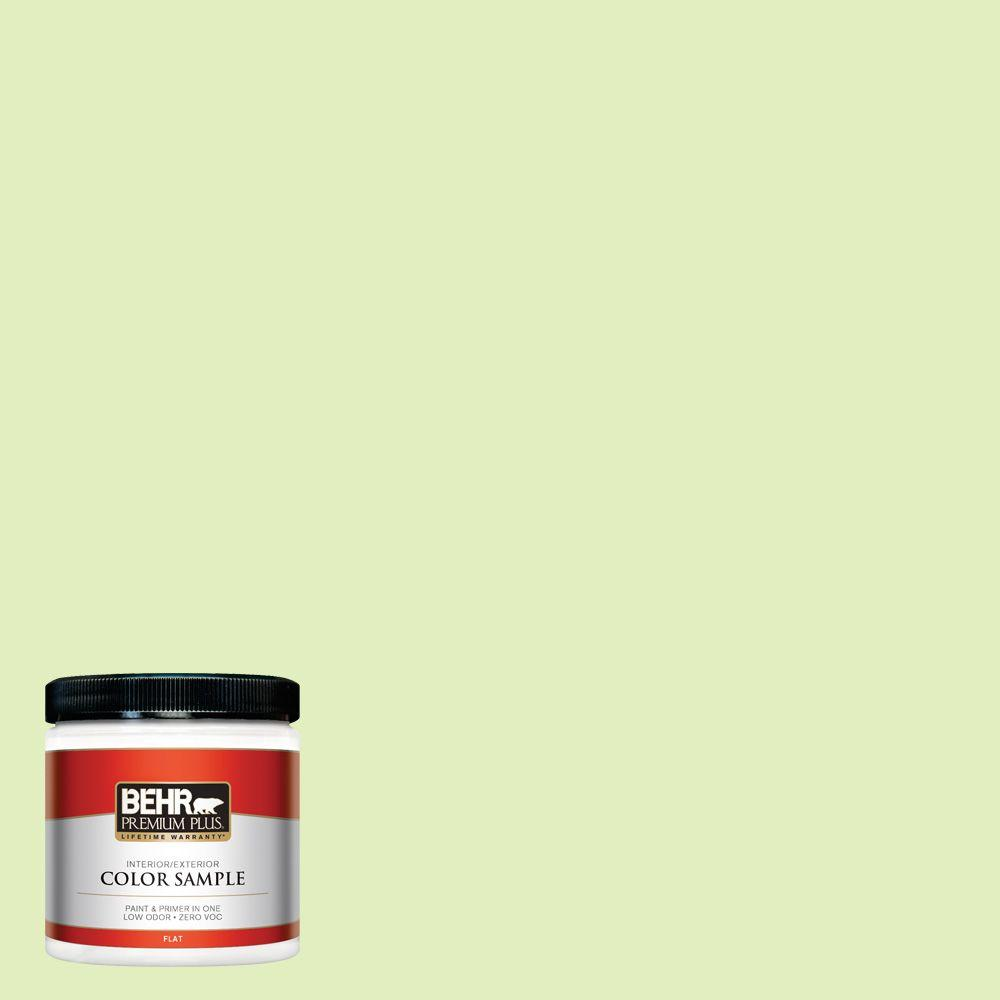 8 oz. #420A-2 Spirit Whisper Interior/Exterior Paint Sample