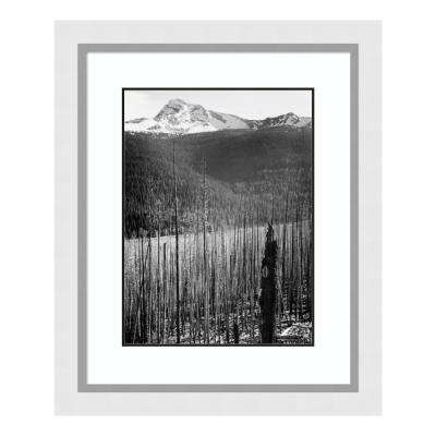 """""""Burned Area, Glacier National Park, Montana - National Parks and Monuments, 1941"""" by Ansel Adams Framed Wall Art"""