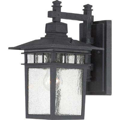 Haven 1-Light Textured Black Outdoor Wall Mount Sconce