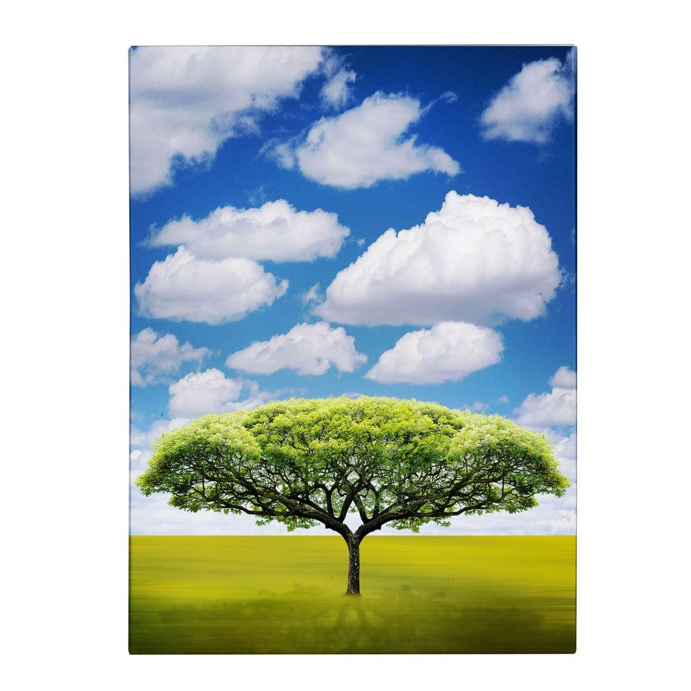 19 in. x 14 in. Improbable Open Space Canvas Art
