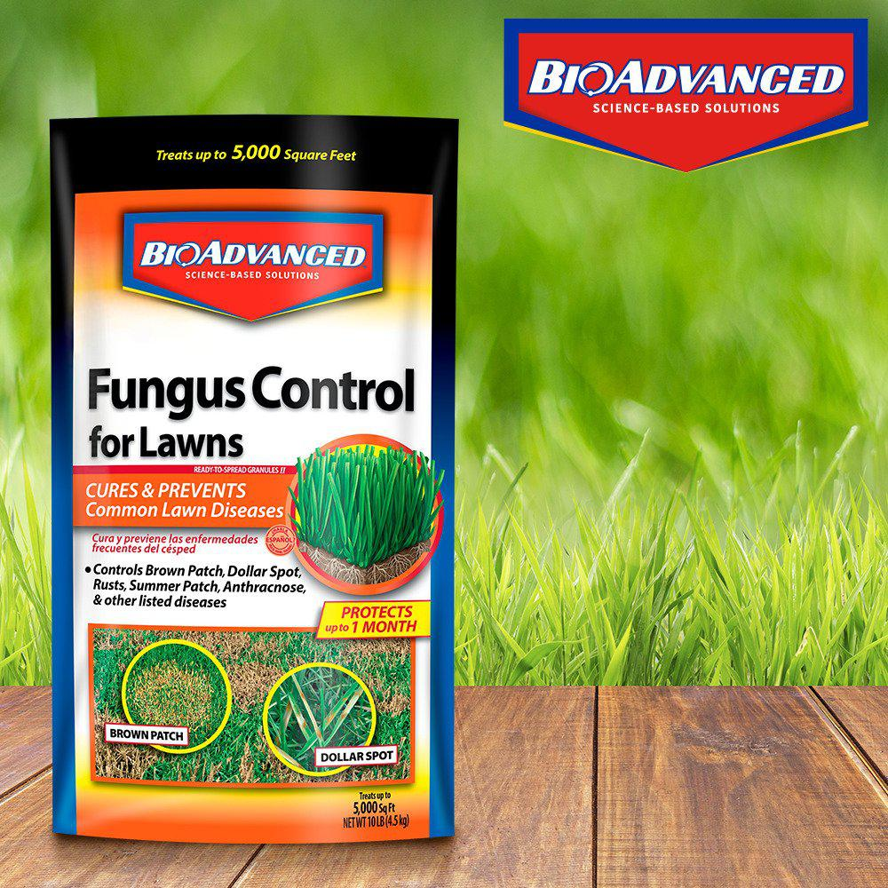 Bioadvanced 10 Lbs Granules Fungus Control For Lawns 701230 The Home Depot