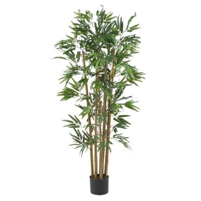 4 ft. Multi Bambusa Bamboo Silk Tree