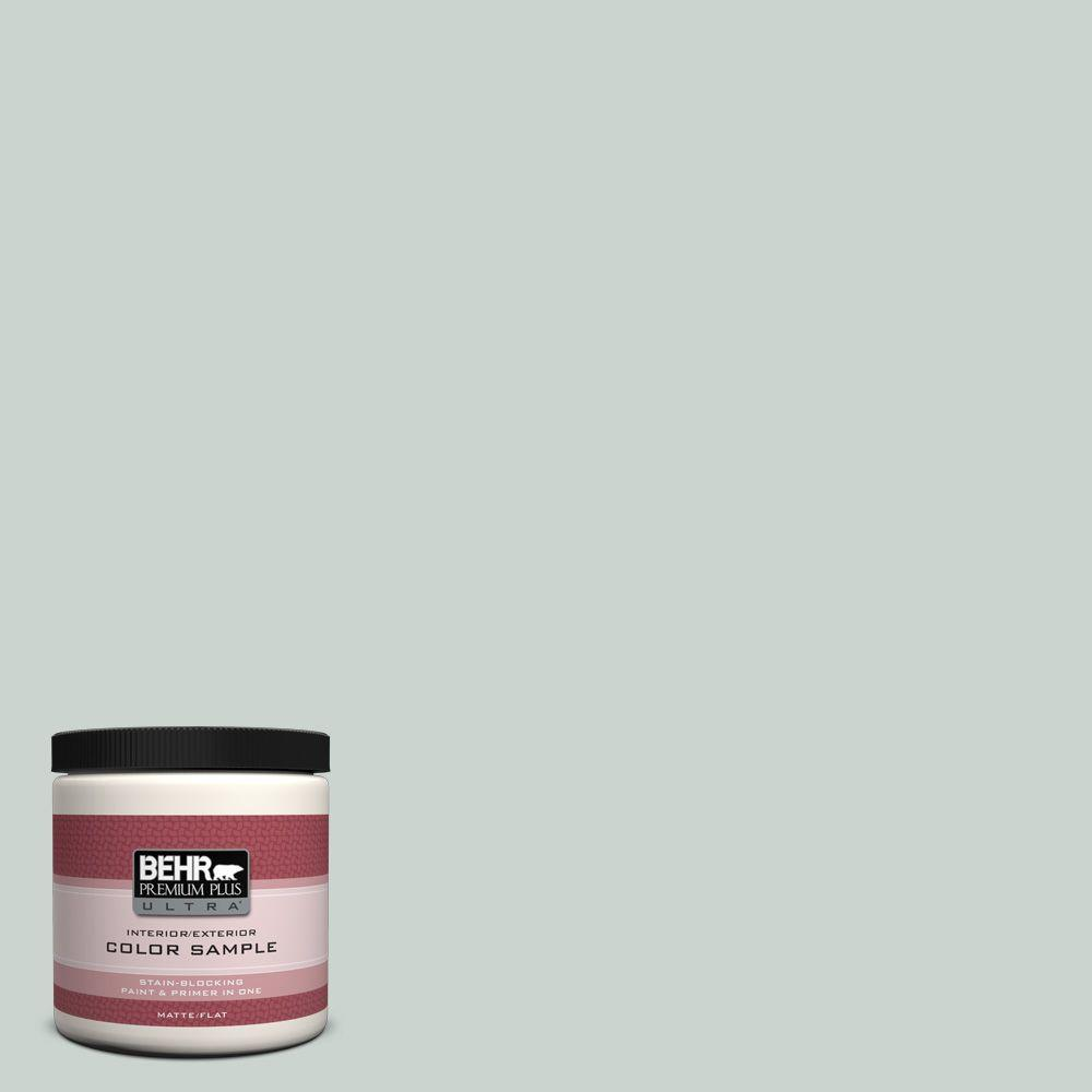 BEHR Premium Plus Ultra 8 oz. #PPU12-11 Salt Glaze Interior/Exterior Paint Sample