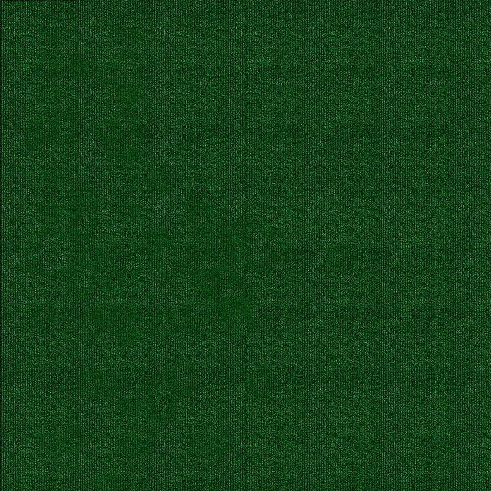 B TrafficMASTER Carpet Sample  Elevations Color Leaf Green 8 In X