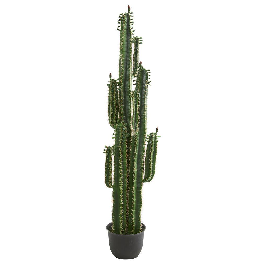 Indoor 6.5 in. Cactus Artificial Plant