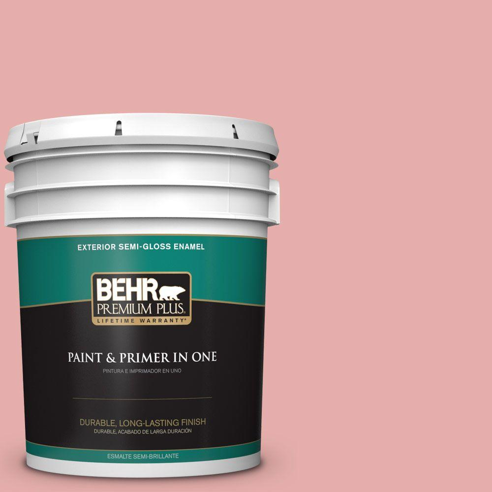 BEHR Premium Plus 5-gal. #160C-3 Rose Silk Semi-Gloss Enamel Exterior Paint, Reds/Pinks