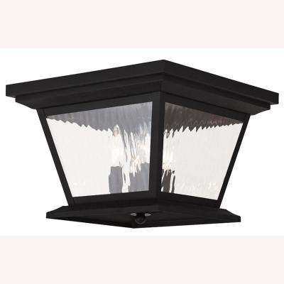 Hathaway 4-Light Black Outdoor Flushmount