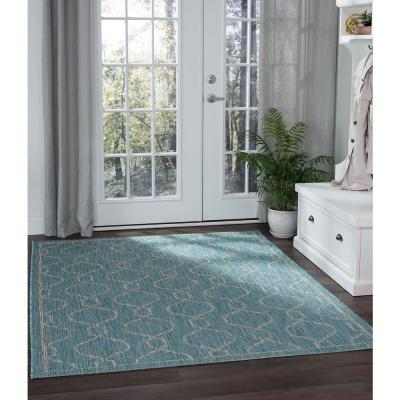 Aqua Outdoor Rugs Rugs The Home Depot