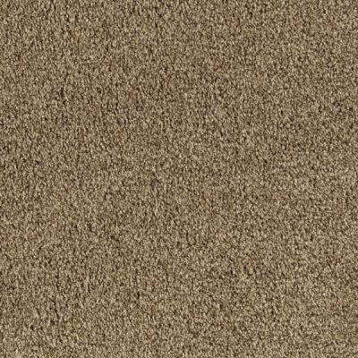 Carpet Sample - Pitch's Gate II - Color Beechnut Texture 8 in. x 8 in.