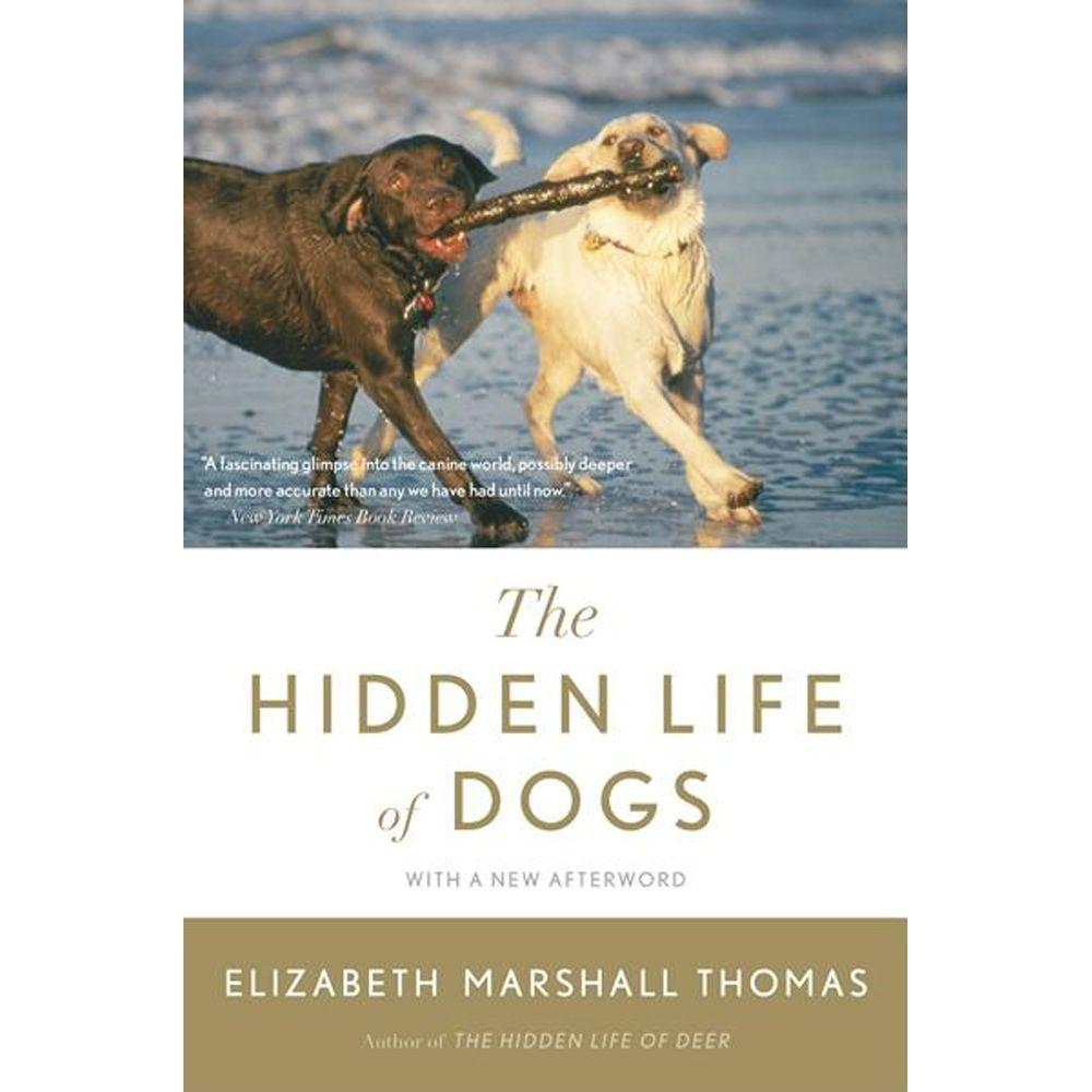 null The Hidden Life of Dogs
