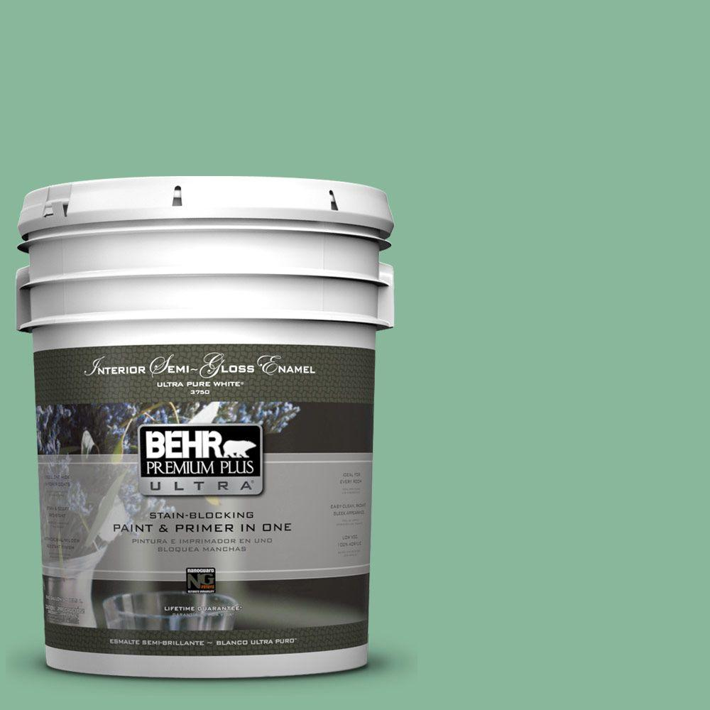 5-gal. #470D-4 Garden View Semi-Gloss Enamel Interior Paint