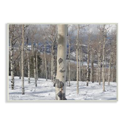 """12.5 in. x 18.5 in. """"Winter Birches Photography"""" by In House Art Printed Wood Wall Art"""
