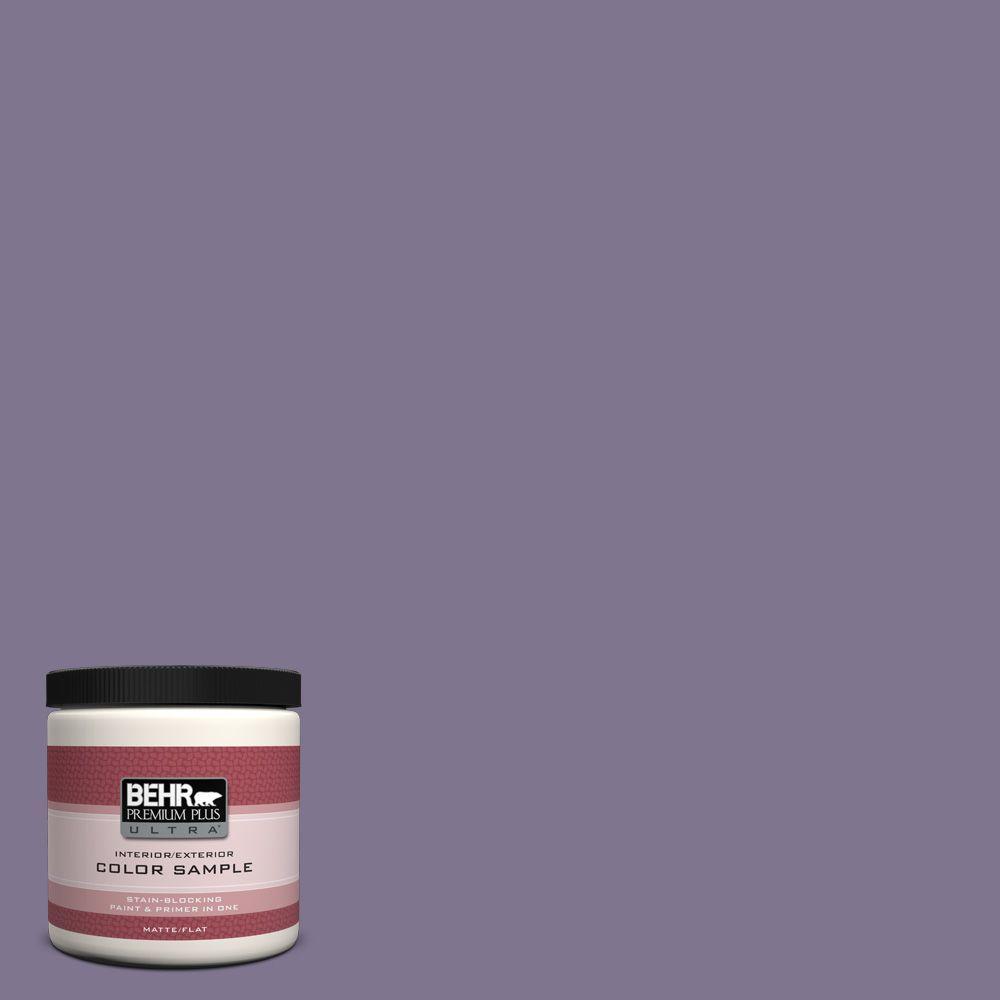 BEHR Premium Plus Ultra 8 oz. #650F-5 Purple Statice Interior/Exterior Paint Sample
