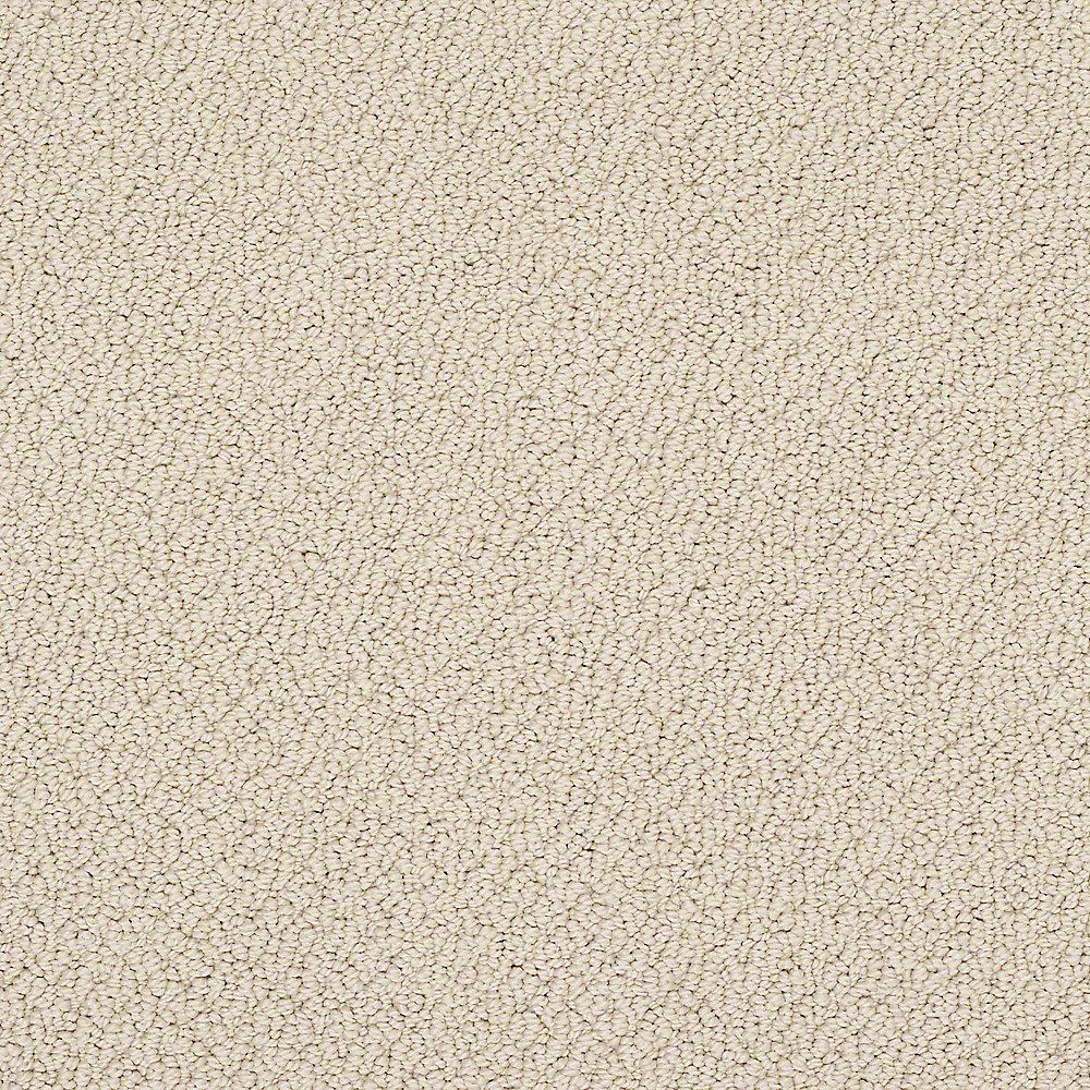 Treasure - Color Adobe Loop 12 ft. Carpet