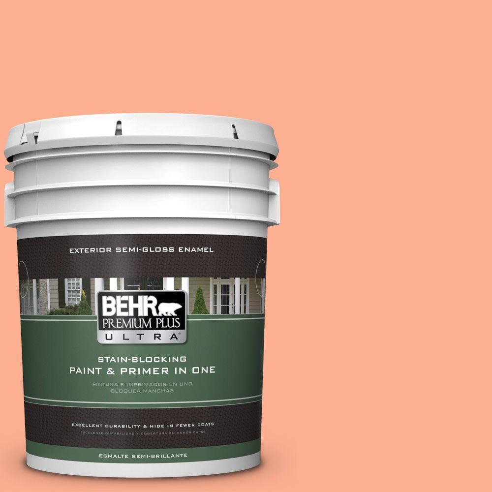 5-gal. #220B-4 Orange Grove Semi-Gloss Enamel Exterior Paint