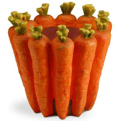 Carrot Flower Pot