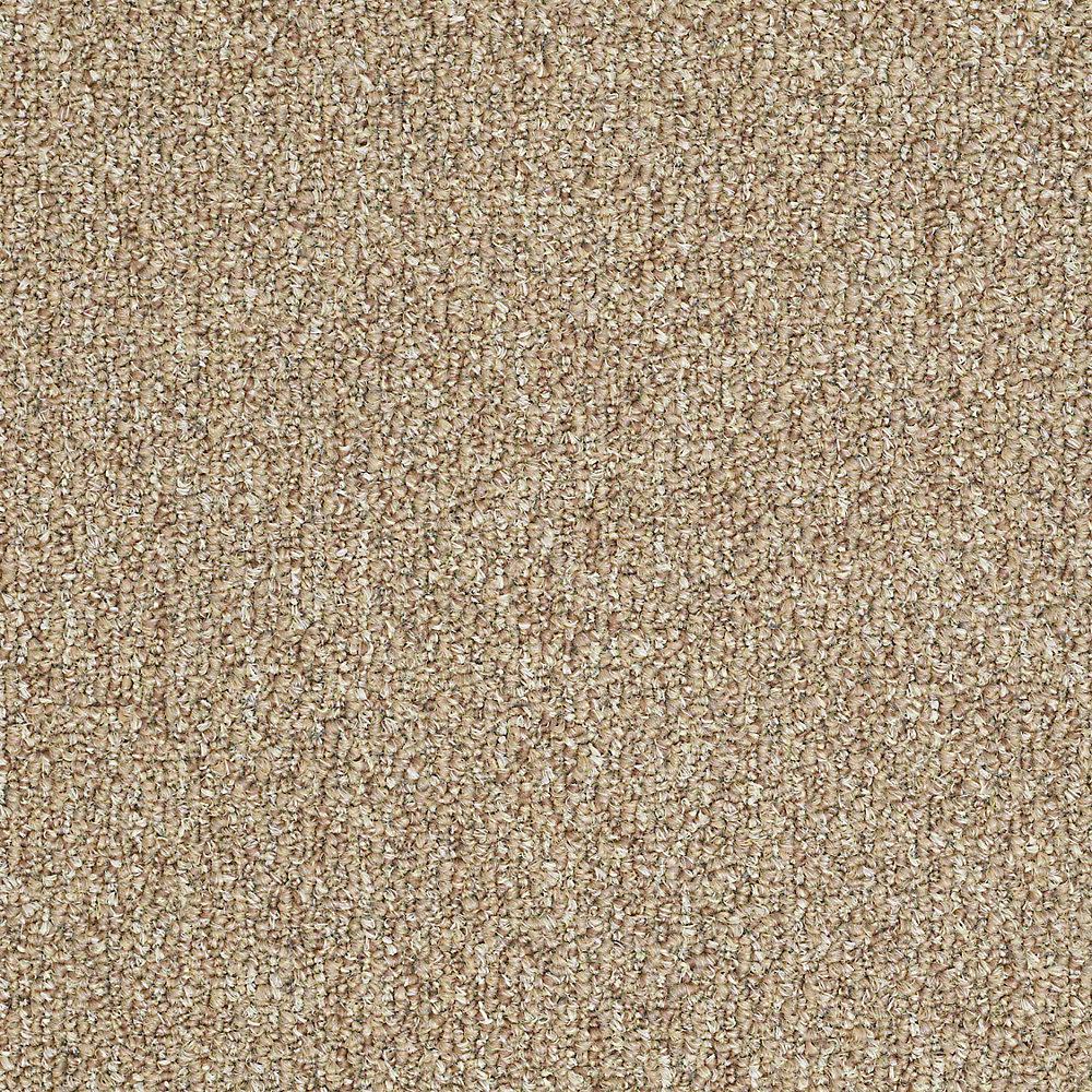Carpet Sample - Fallbrook - In Color Honey Bear 8 in. x 8 in.