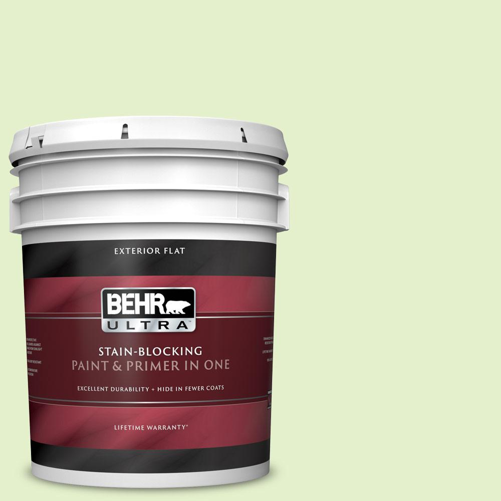 Behr Ultra 5 Gal 420c 2 Water Sprout Flat Exterior Paint And Primer In One 485005 The Home Depot