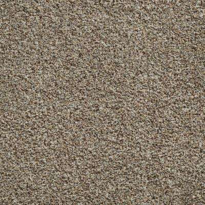 Toulon - Color Thornwood 12 ft. Carpet