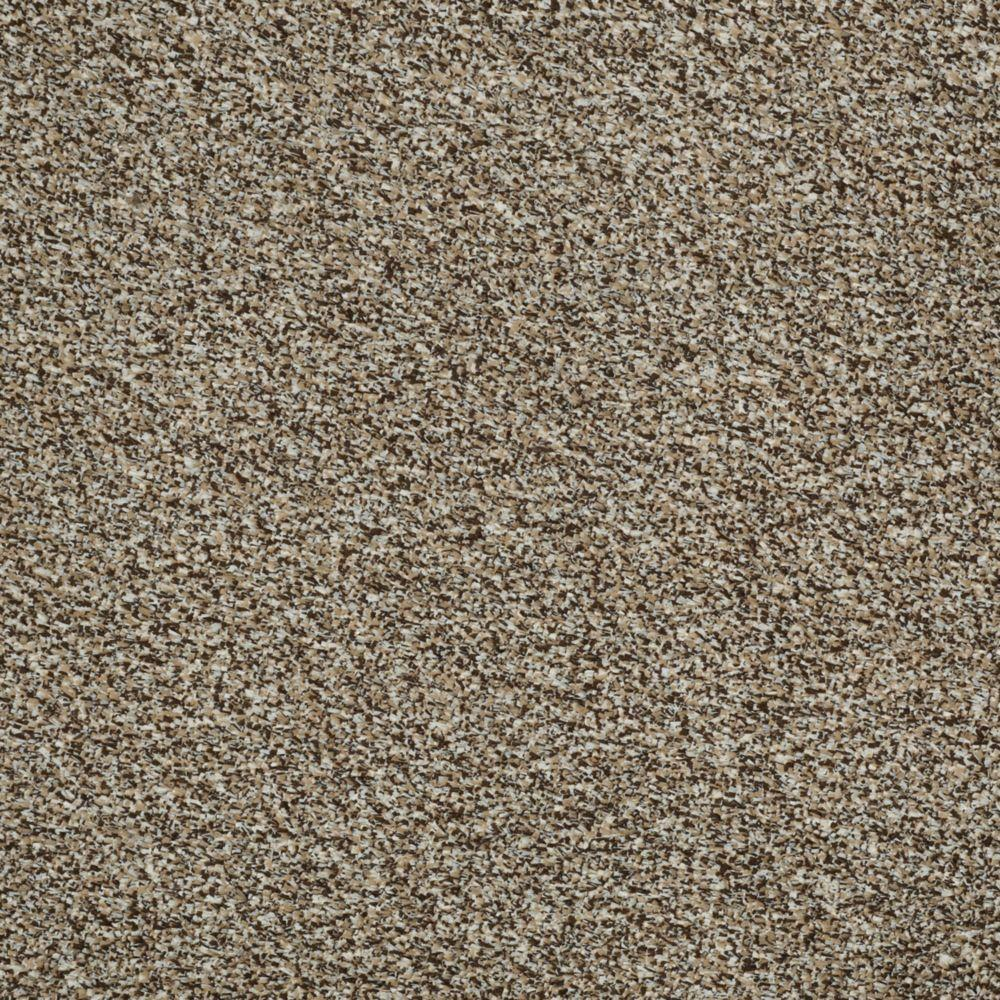 TrafficMASTER Toulon - Color Thornwood 12 ft. Carpet