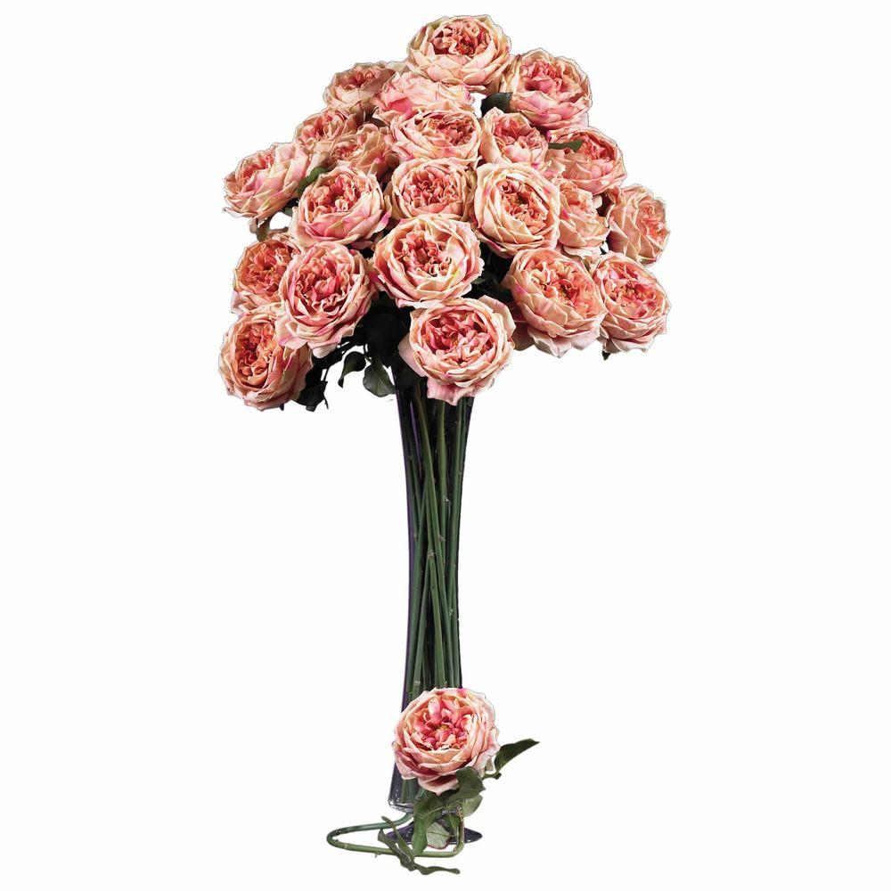 null 31 in. H Pink Large Rose Stem (Set of 12)