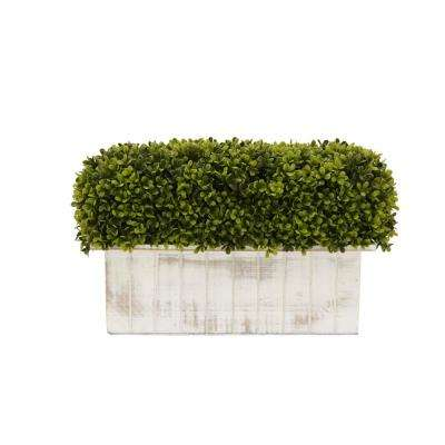 Faux Boxwood Pot