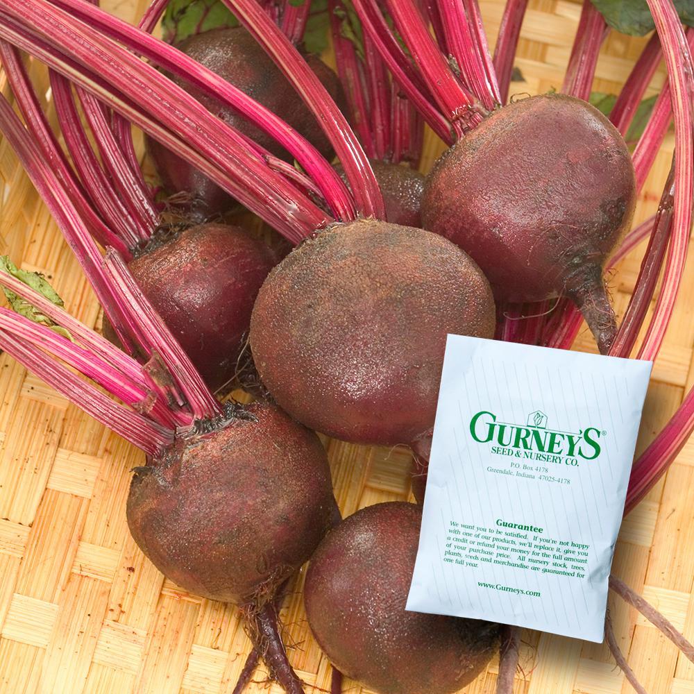 Beet Ruby Queen Seed (400-Pack)