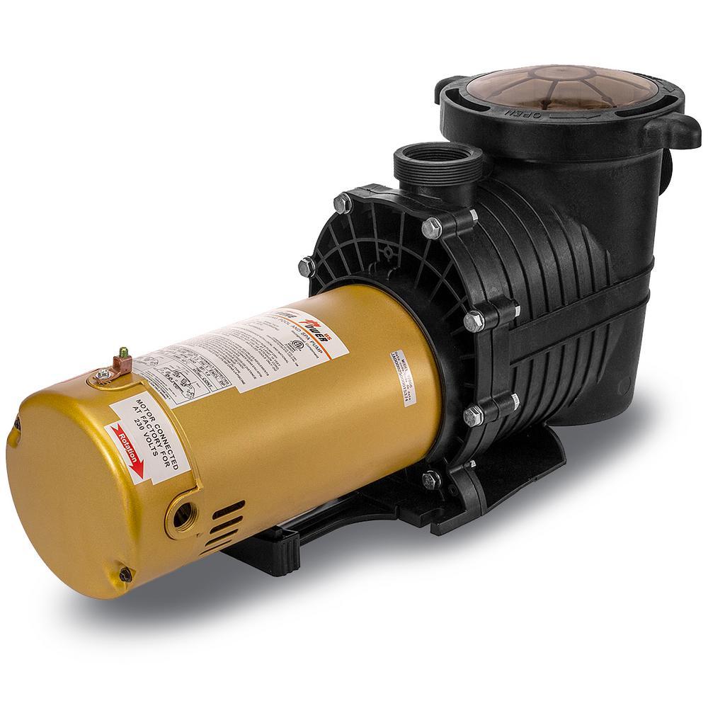 1.5 HP In-Ground Pool Pump Dual Speed 230-Volt Dual Watt