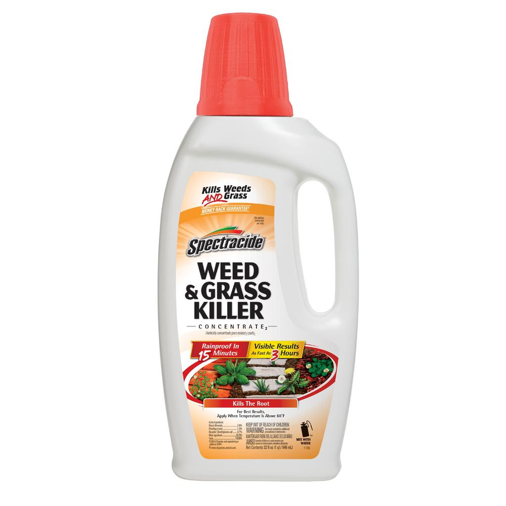 Spectracide Weed and Grass Killer 32 oz. Concentrate -  HG-96390-1
