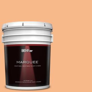 Behr Marquee 5 Gal 260c 3 Fresh Peaches Flat Exterior Paint And Primer In One 445405 The Home Depot