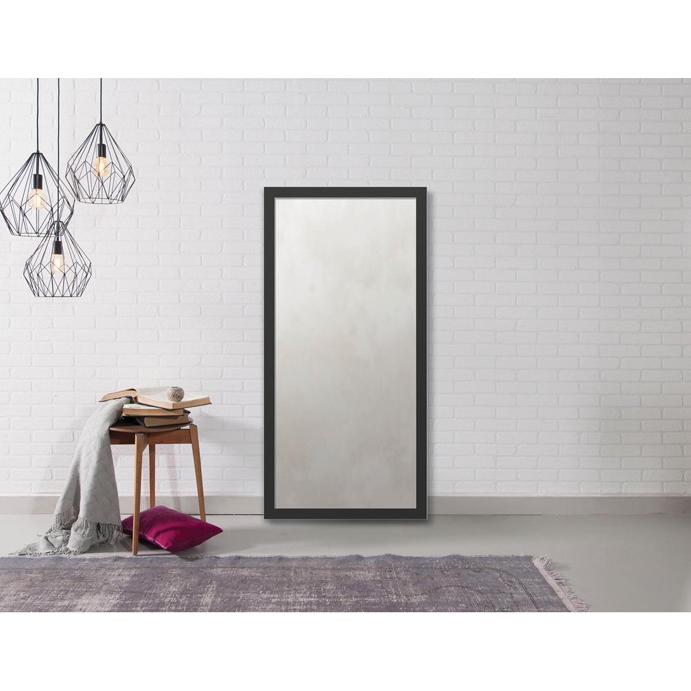 Hyde 22.875 in. x 46.875 in. Modern Framed Antique Mirror