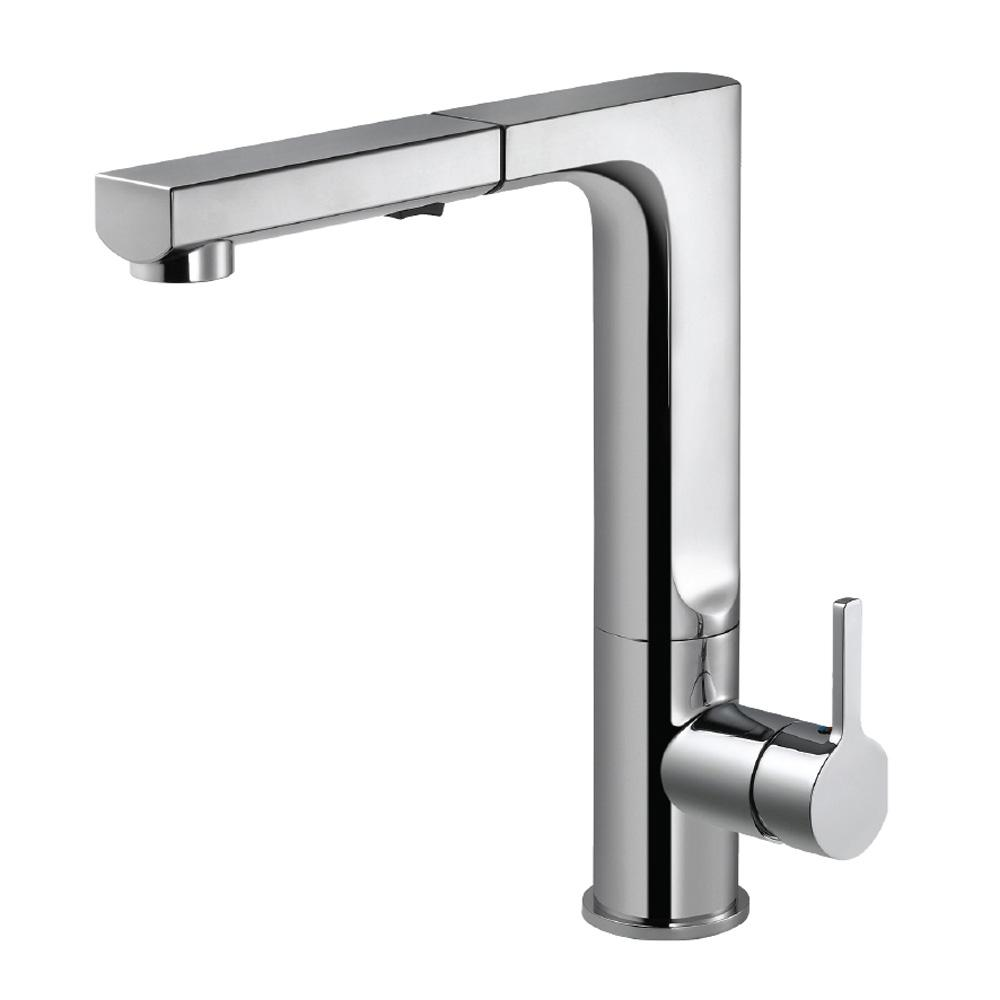 Ascend Single-Handle Pull Out Sprayer Kitchen Faucet with CeraDox Technology in