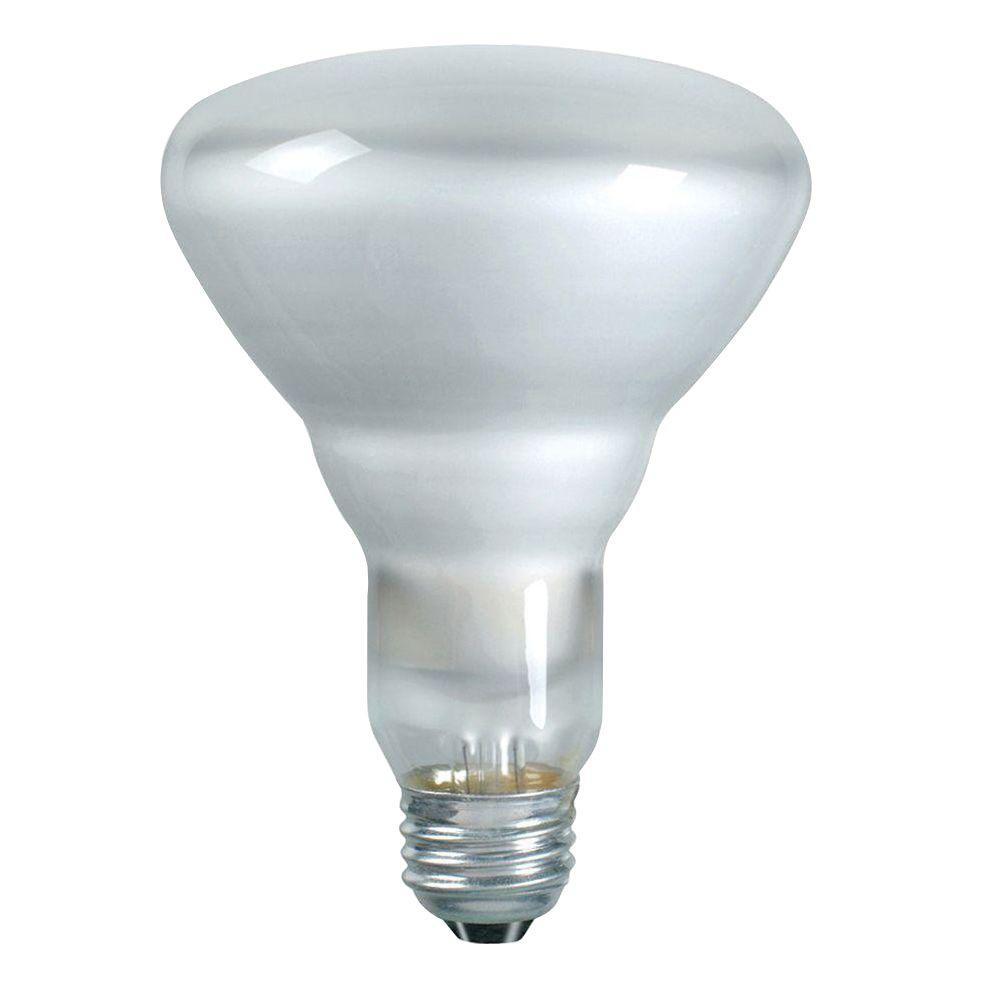 DuraMax 65-Watt Incandescent BR30 Indoor Flood Light Bulb (12-Pack)