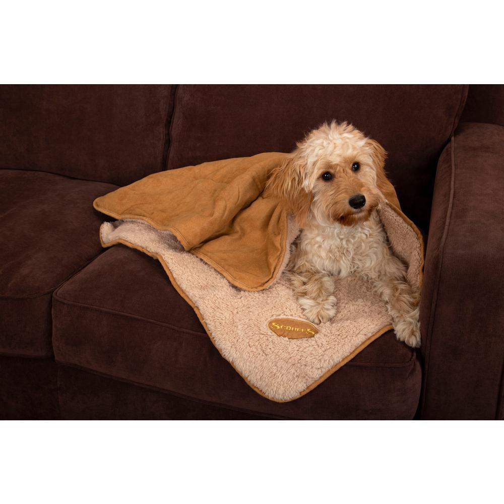 Snuggle 43 in. x 29.5 in. Tan Dog Blanket