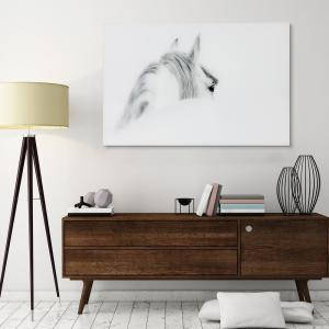 48-in x 32-in Blanco Mare Horse Frameless Glass Graphic Art