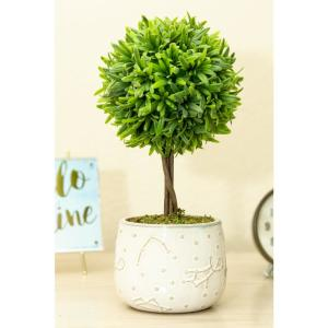 Deals on Flora Bunda 10-in Artificial Boxwood in Constellation Ceramic Pot