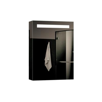 Espirit 17.7 in. W x 25.6 in. H Lighted Impressions Frameless Surface Mount LED Mirror Medicine Cabinet in Aluminum