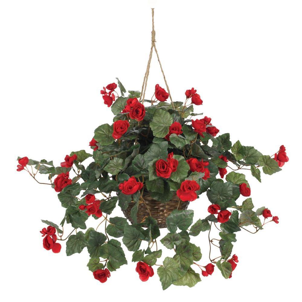 24 in. Begonia Silk Plant Hanging Basket